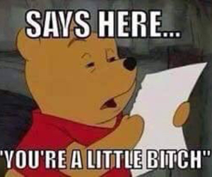 bitch, funny, and winnie the pooh image