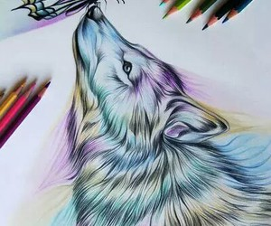 wolf, art, and colour image