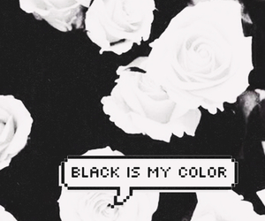 black, wallpaper, and rose image