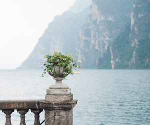 sea, flowers, and italy image