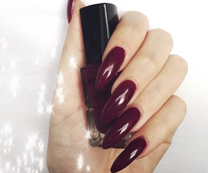 claws and nails image