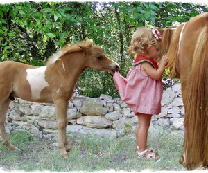 cute girl, horse, and little girl image