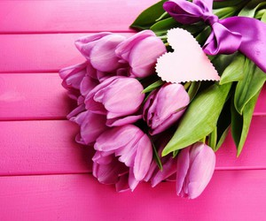 heart, pink, and spring image