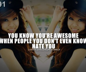 awesome, life, and haters image