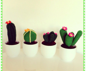 cactus, greens, and lovely image