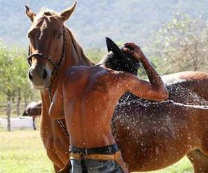 cowboy, Hot, and horse image