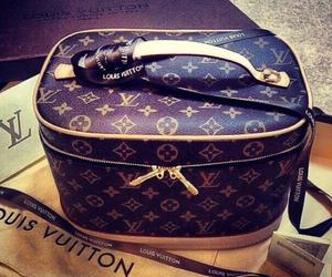 Louis Vuitton and bag image