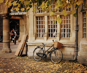 autumn, bike, and vintage image
