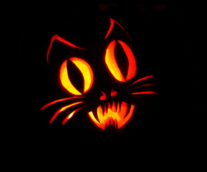 carving, cat, and kitteh image