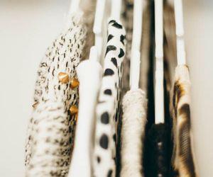 fall, fashion, and polka dots image