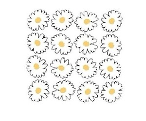 daisy, flowers, and transparent image
