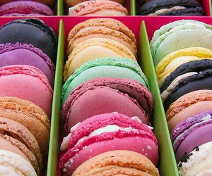 colorful, food, and macaroons image