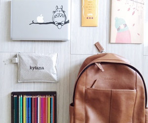 college, lifestyle, and girly image
