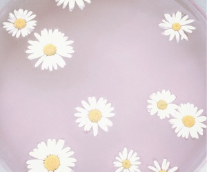 flower and pastel image
