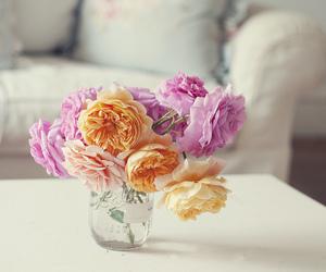 flowers, pink, and orange image
