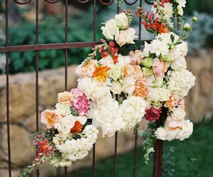 flowers, rose, and gate image