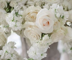 bouquet and rose image