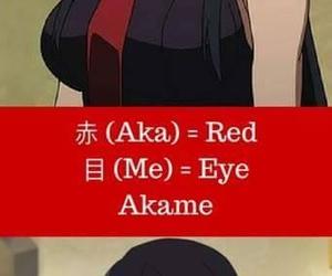 akame, akame ga kill, and kurome image