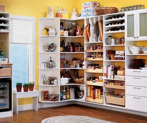 shelving units, garage cabinets, and pull out pantry shelves image
