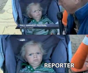 funny, lol, and reporter image
