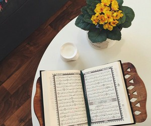 flowers, islam, and holy quran image
