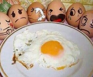 eggs, funny, and egg image