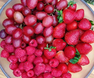 berry, eat clean, and fitness image
