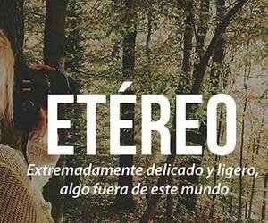 Étereo, delicate, and frases image