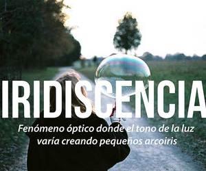 iridiscencia, words, and lights image