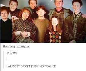 harry potter, ed sheeran, and funny image