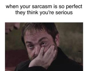 sarcasm, funny, and lol image