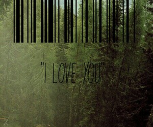 barcode, forest, and nature image