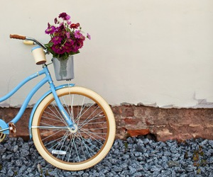 flowers, amazing, and bike image