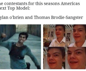 funny, the maze runner, and thomas image
