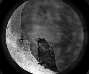 moon, crow, and dark image