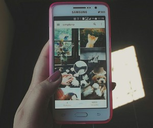 case, photography, and cute image
