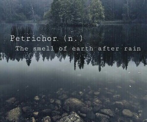 earth, hipster, and petrichor image