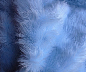 blue, aesthetic, and fur image