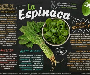 nutricion image