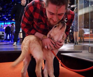 adorable, andrew, and puppy image