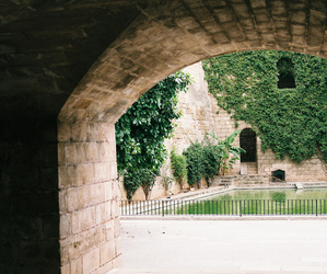 architecture, green, and nature image