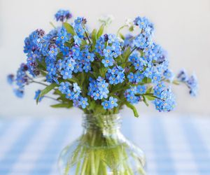 flowers, blue, and spring image