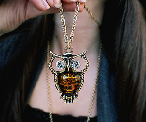 owl, necklace, and accessories image