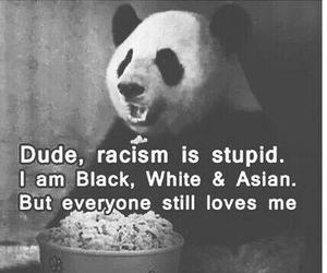 panda, racism, and black image