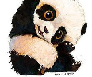 panda, animal, and kawaii image
