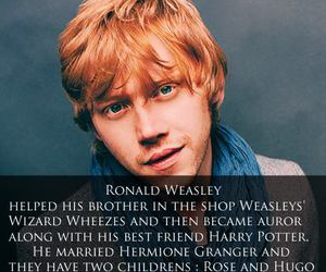 actor, harry potter, and ron weasley image