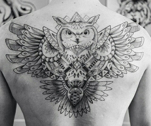 tattoo, back, and owl image