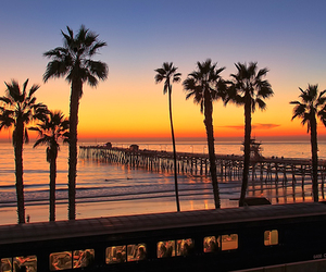 palms, sunset, and beach image