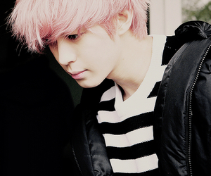 handsome, pink hair, and hongbin image