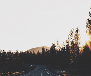 road, nature, and travel image
